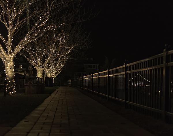 Christmas Lights Lewes 12.20.2014_9716