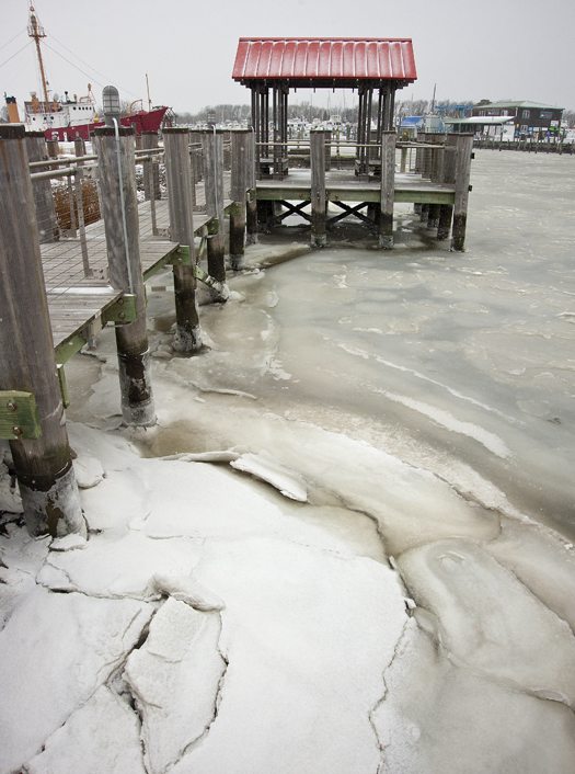 Icy Lewes Harbor 1.25.2014_2407