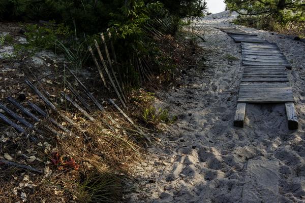 Lewes Beach Walkway 7.13.2014_3520