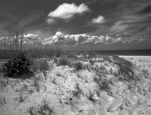 Lewes Dunes and Clouds 5.15.2014_7034
