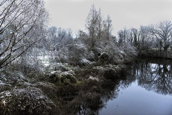 Snow Dover 12.11.2014_9688