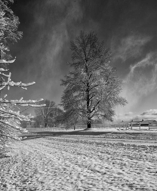 Snow Storm 1.3.2014_0511