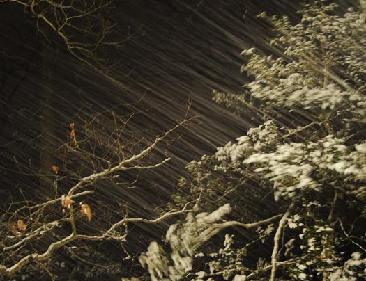 Snowing 2.5.2010_020510_0743