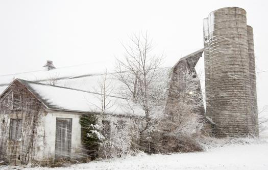 Snowstorm Lewes 3.25.2014_4889