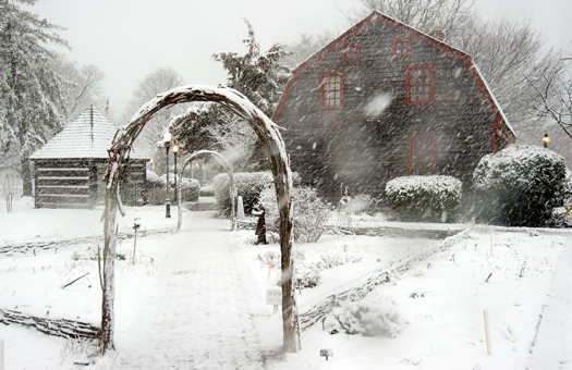 Snowstorm Lewes 3.25.2014_4916