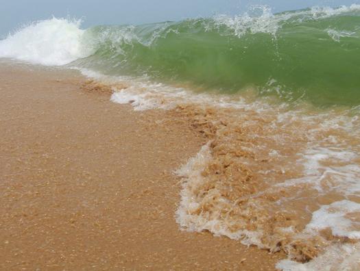 Waves 8.21