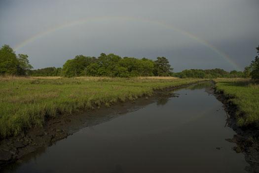 rainbow-canary-creek-5-11-2009_051109_8999