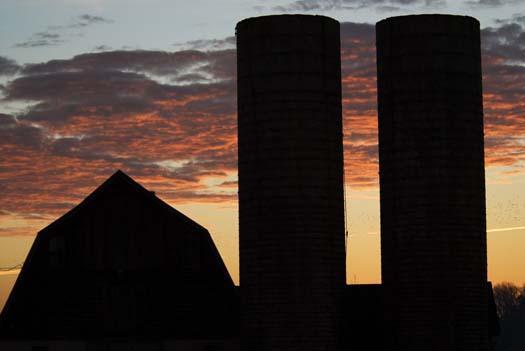 sunrise-2-45-2008_8050copy1.jpg