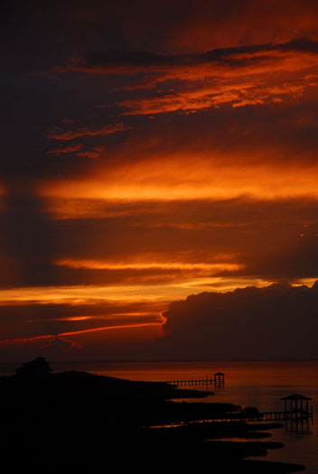 sunset-83-and-sunrise-egrets-84_3632